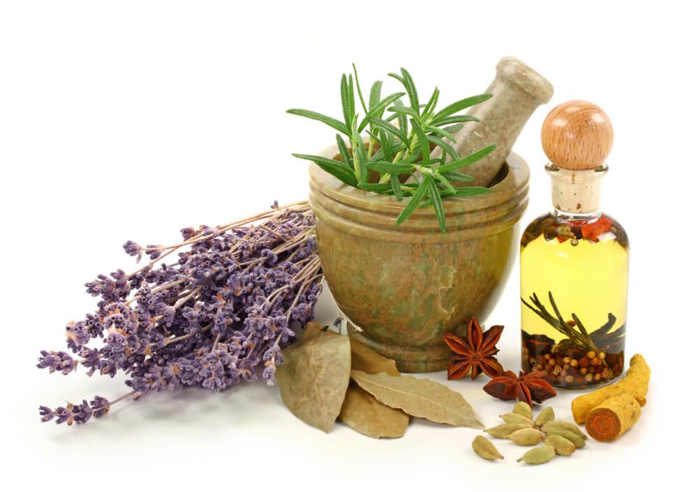 Основы фитотерапии: травы при борьбе с лишним весом