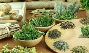 травы онколоогия