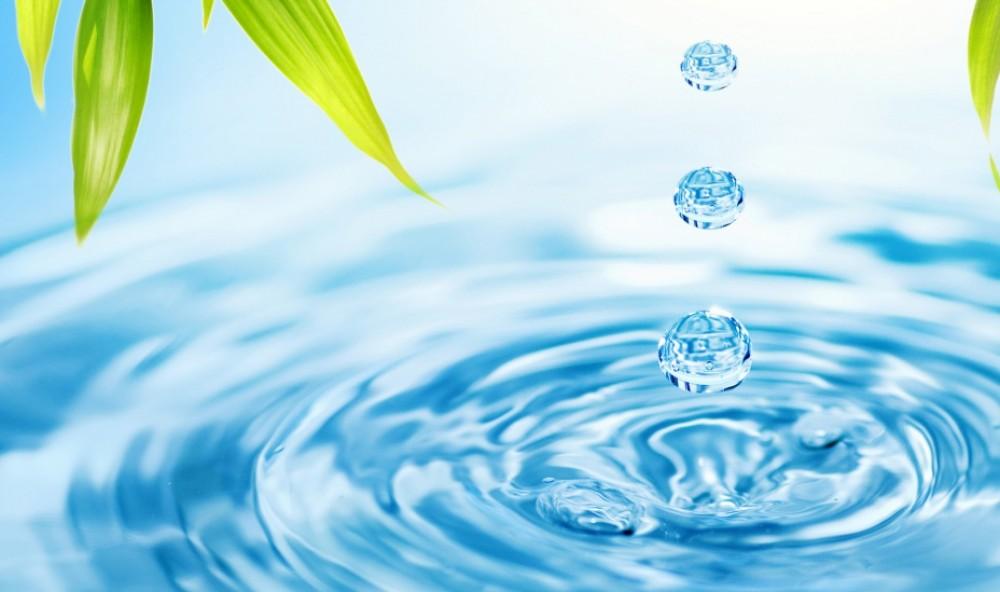 Вода- основа жизни!