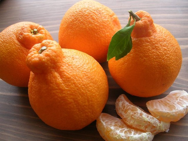 Декопон-мандарин