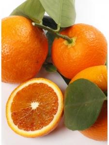 """Апельсин клубничный """"Фрагола"""" (C. sinensis """"Fragola"""")"""