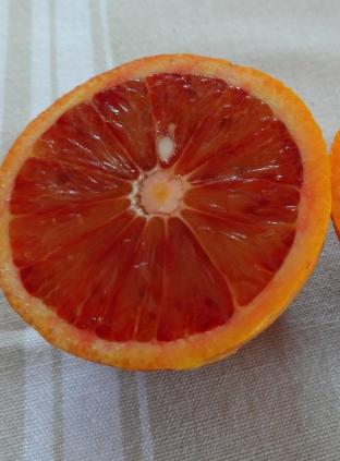 Апельсин клубничный Фрагола