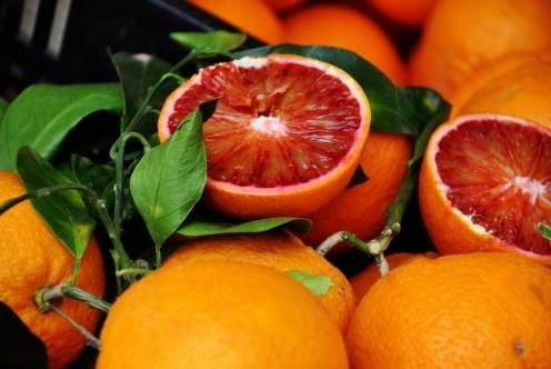 Citrus sinensis cv. Moro Кровавый апельсин